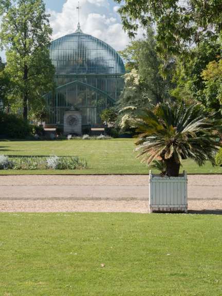 The Palmerium, from the entrance to the gardens.
